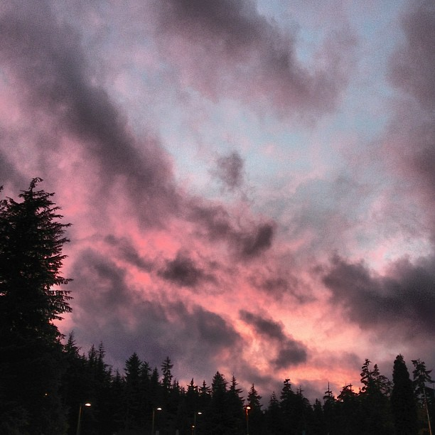 Pink at night, sailors delight! #campussky #wintersunset #whatelsecanisay?